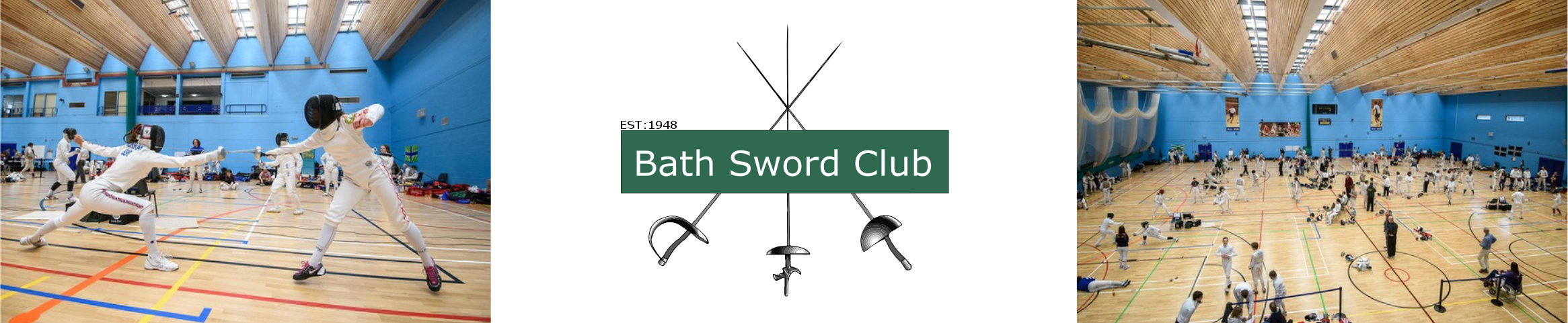 Bath Sword Club Banner